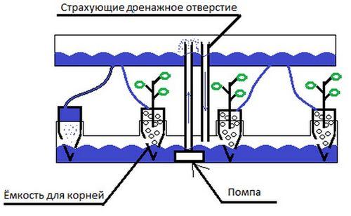 Выращивание клубники в трубах ПВХ горизонтально - подробная инструкция!