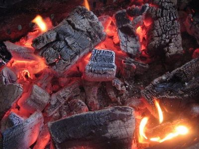 Какие дрова лучше для отопления - научитесь выбирать правильно!